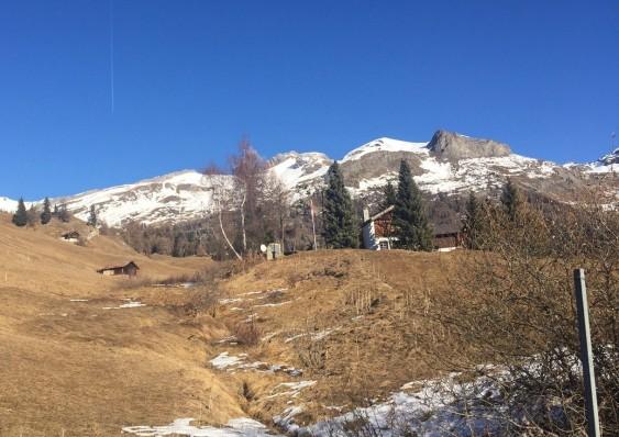 十二月的阿爾卑斯山仿如秋天。
